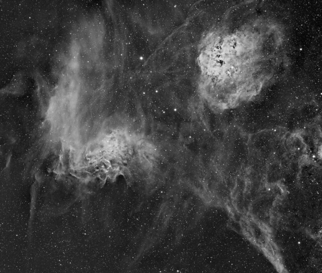 IC410 and IC405 (Tadpoles and Flaming Star nebula, Sh2-229, Caldwell 39) in mono