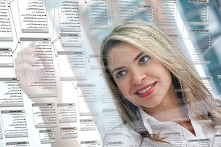 Woman working on database schema   by cafuego
