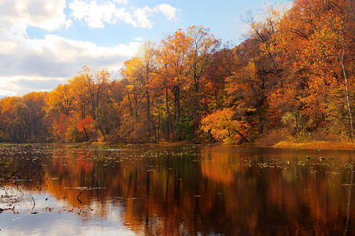 park autumn lake color reflection tree fall newjersey day cloudy foliage reservation watchungreservation lakesurprise