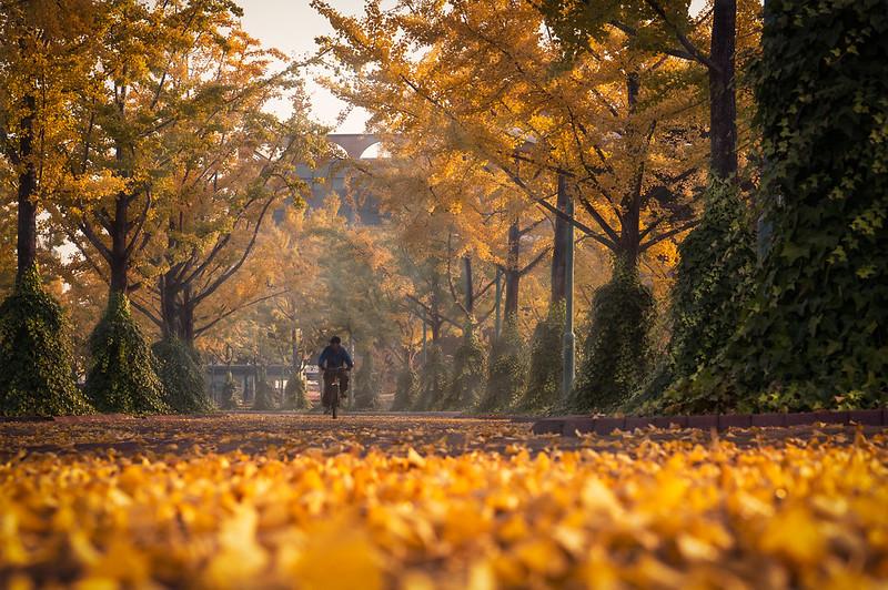Ulsan Grand Park - Ulsan, South Korea