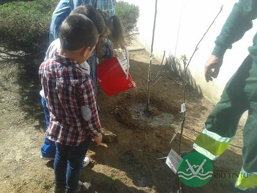 2017_03_21 - Jardim de Infância das Areias (13)