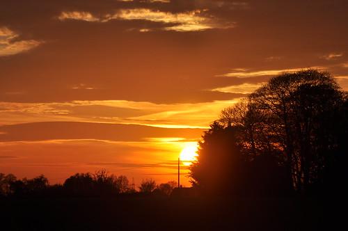 sunset sun evening sky clouds trees treesilhouette treessilhouettes treesilhouettes atardecer sonnenuntergang coucherdusoleil silhouette