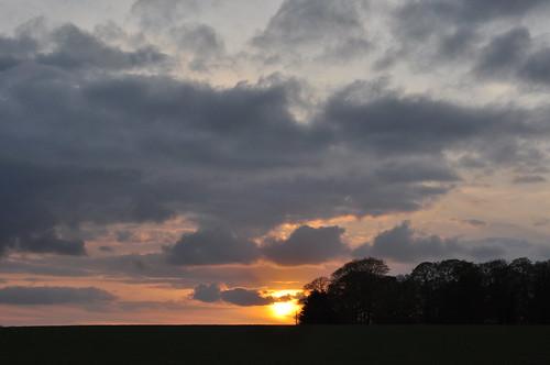 sunset sun evening norfolk trees treessilhouettes treesilhouettes clouds sunsetsky sunsetsilhouette sky atardecer pôrdosol coucherdusoleil sonnenuntergang