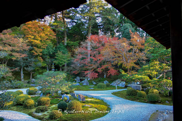 The Gardens of Manshu-in Shoin in Kyoto during the autumn season!