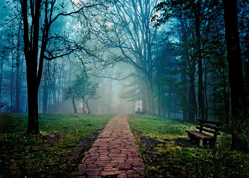 park blue mountain green weather misty fog bench path top foggy wv walkway grandview