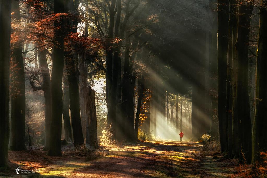 Early Morning Magic | Lars van de Goor | Flickr