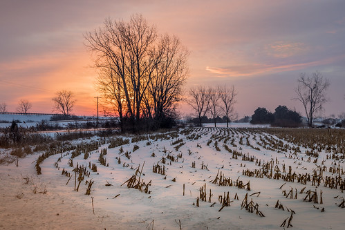 sunrise tree onramp cornfield snow amanecer december winter cold us75 i75 canon eos 5d mark iv canoneos5dmarkiv