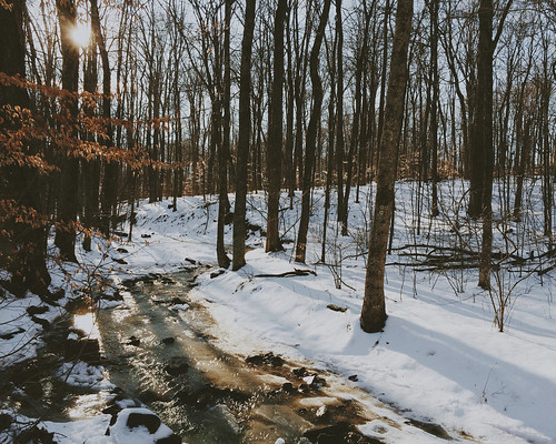 white snow nature water beauty forest sunrise river landscape photography reflecting woods bare bones flowing bastille oblivion iphone courtneysinclair vsco iphoneography vscocam