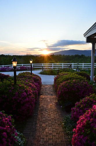 theredhorseinn blueridgemountains bedandbreakfast elopementwedding elope petfriendlycottage romanticgetaway romanticview romance greenville sc landrum