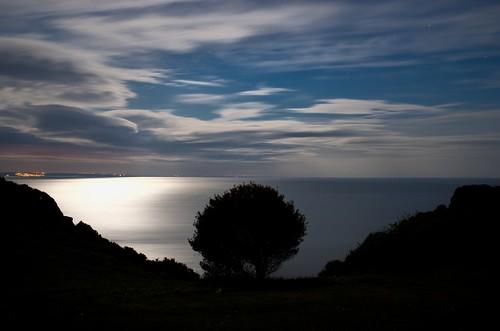 longexposure blue sea sky tree silhouette swansea wales night clouds dark twilight quiet cliffs gower southgate pennard pennardcarpark threecliffscoffeeshop