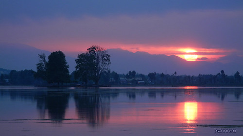 pink sunset india purple calm reflet kashmir srinagar jk coucherdesoleil montagnes dallake