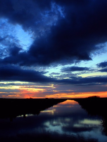 sunset reflection nature beauty birds clouds landscape unitedstates florida hometown dramatic naturallight everglades drama inland dike cloudscape wetland floridaeverglades alligators southflorida afterglow sawgrass browardcounty riverscape riverofgrass busysky coralspringsflorida riverwithinariver rivershine