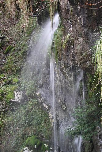 Parque Natural de Gorbeia #DePaseoConLarri #Photography 2592