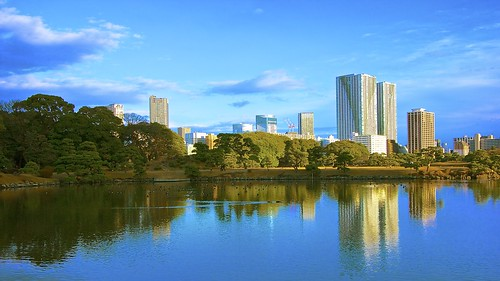 winter buildings garden landscape tokyo cityscape peaceful tranquil hamarikyu lovelycity