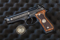 Previous: Beretta M9 30th Anniversary Limited Edition