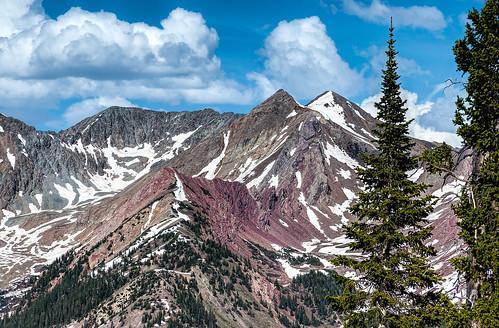 Colorado Rockies | by docoverachiever