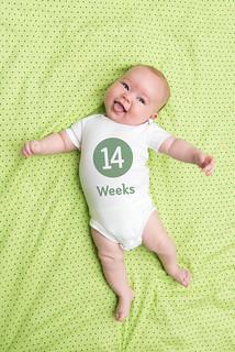 14 Weeks | by morgamic