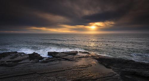 pelicans sunset bonnydoon california coast ocean pacific 1635mm nikon d800 nikond800 seascape northerncalifornia elmofoto lorenzomontezemolo singhrayfilters leefilters gnd reversegnd 500v cloudy day fav10 fav20 fav30 fav40 fav50 fav60 fav70 fav80 fav100 10000v