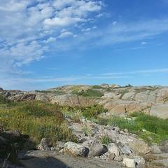 On the rocks #stavern #norway