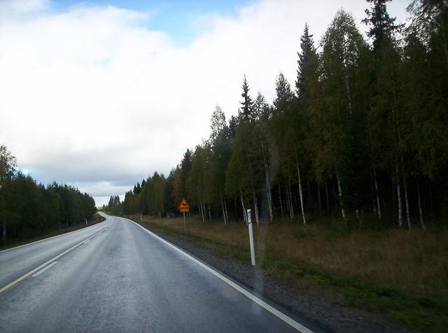 Carretera sin nevar por invierno cálido en Finlandia