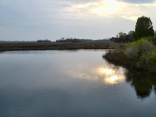 water creek river fishing florida fl rogers fla jenkins hernando elzey hernandocounty hernandobeach