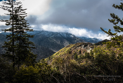 alumcaveblufftrail gsmnp east tennessee winter spring park national mountains smoky great stormy clouds hiking trail