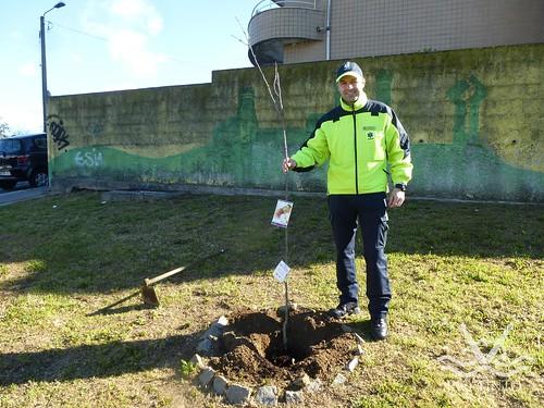 2017_03_21 - Plantação de Árvores pelo INEM (1)