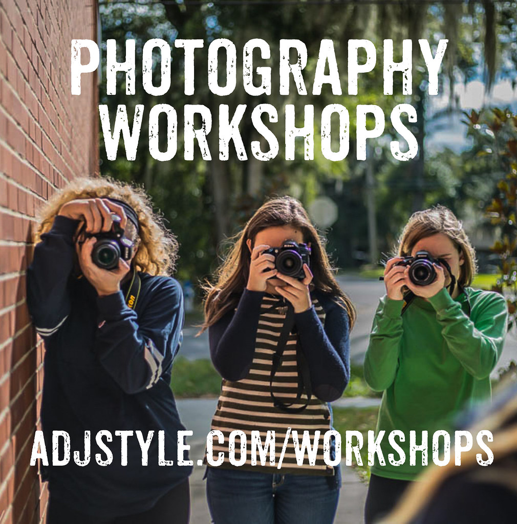 Beginner's Photography Workshops