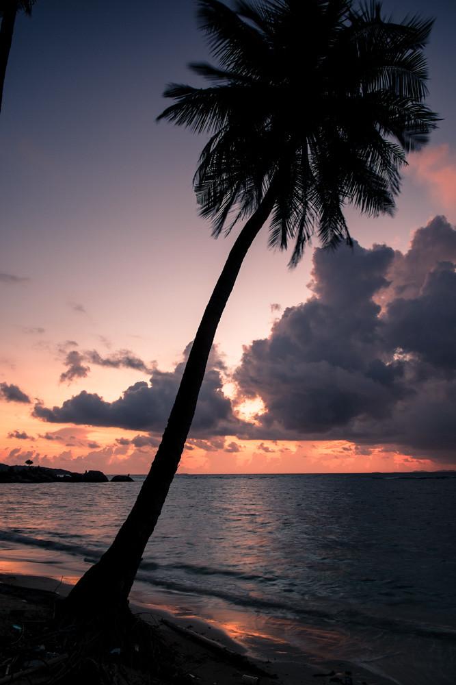 Nirwana Resort Sunrise