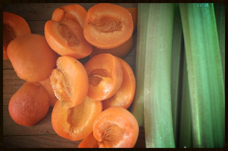 Mini Rhubarb-Apricot Crisps {Dairy-Free}