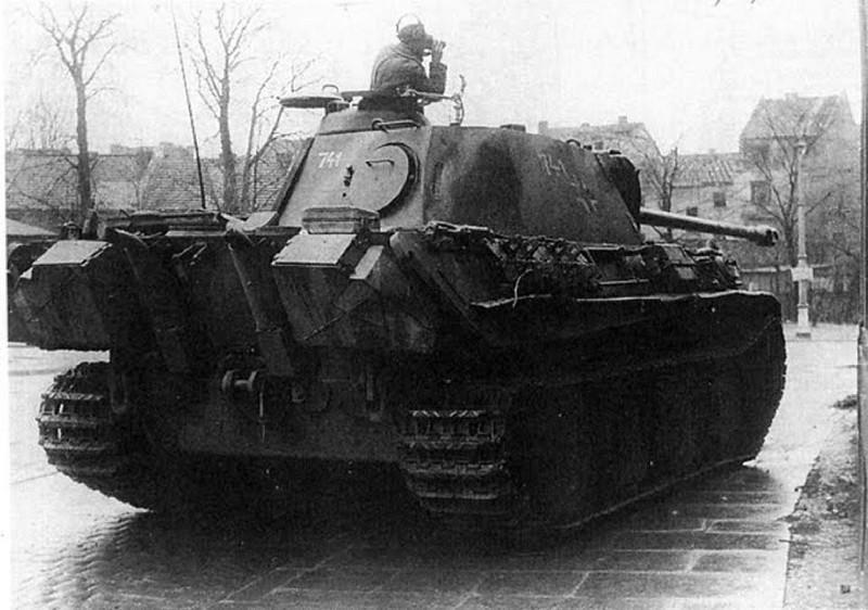 Panther (3)