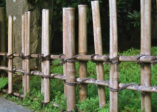 Bamboo fence between Tea Garden and Lower Pond | by Rosewoman