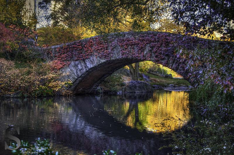 Gapstow Bridge fall colors