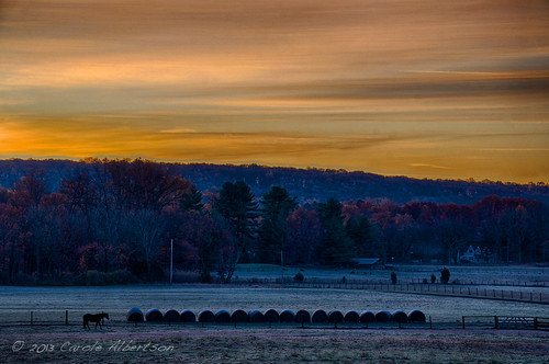 november horse sunrise landscape dawn cool farm pa bucks goldenhour week45 themelandscape dawnrising 52in2013