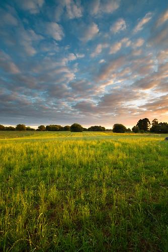 summer sky sun sunlight verde green clouds zeiss sunrise landscape nikon paisaje amanecer nubes cumulus verano fields skyscapes 15mm cloudscape llanes campos zf2 distagont2815 d800e