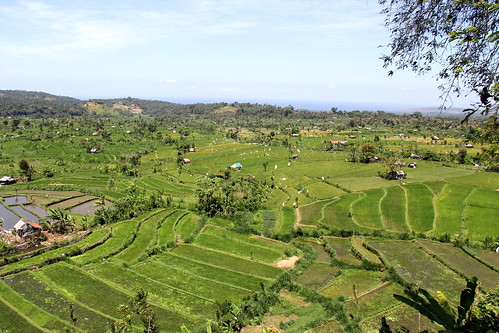 View from the Tirtagangga road | by asitrac