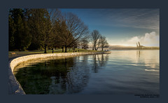 New Years Day at Stanley Park 2013
