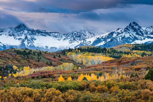 morning autumn trees plants mountains clouds forest sunrise flora colorado unitedstates aspens ridgway sanjuanmountains ridgeway uncompahgrenationalforest