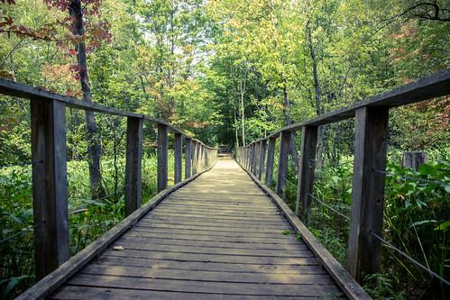 Bridge at Mud Lake | by scott.a.hooker