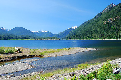 Karst Creek flows into Buttle Lake, Strathcona Provincial Park, Central Vancouver Island, British Columbia, Canada