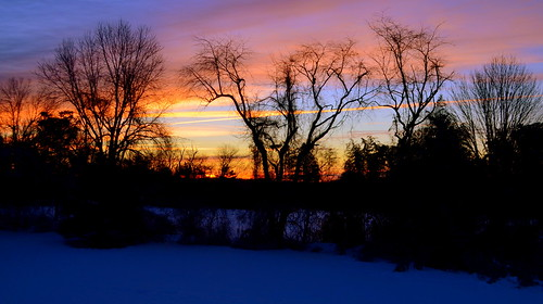 new trees snow night clouds sunrise nj jersey whitehousestation