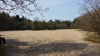 Zandverstuiving- Sand Drift - Osse Hei