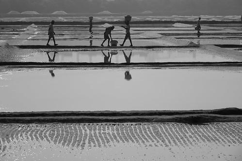 mumbai salt