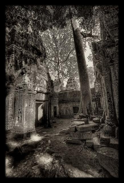 Siem Reap K - Ta Prohm 34
