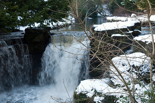 Winter 2013 (Jesmond Dene)  (3) | by Howard.