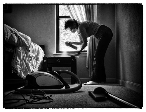 Woman's Work is Never Done - Damn Dust! | by Anne Worner