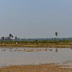 11 Siem Reap en bici 29