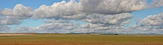Jamestown Wind Farm, South Australia_6315-17