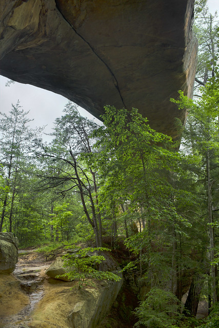 Sky Bridge 4, Daniel Boone National Forest, Wolfe Co, KY