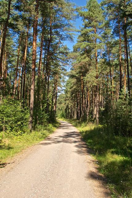 Hiking - Steinberg am See